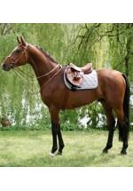 Saddles & Saddle Equipment