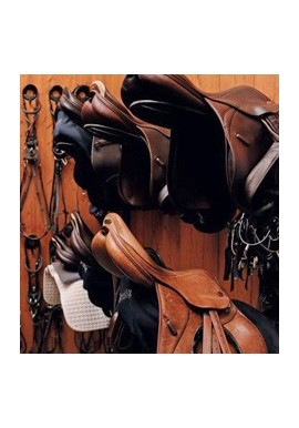 Saddles &- Equipment