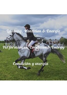 Leistung, Kontition & Energie