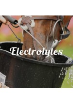 Elektrolyte