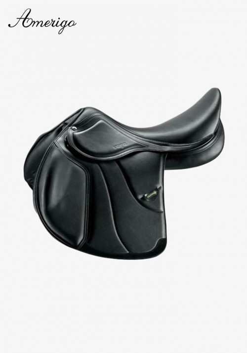 Amerigo - Vega General Purpose Dressage Special
