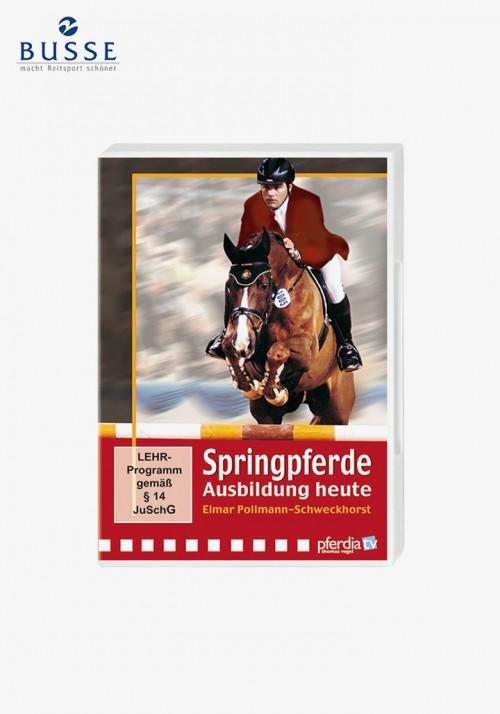 Busse - Springpferde-Ausbildung heute DVD Elmar Pollmann-Schweckhorst